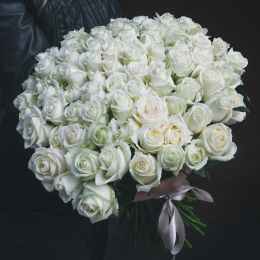 Роза белая 101