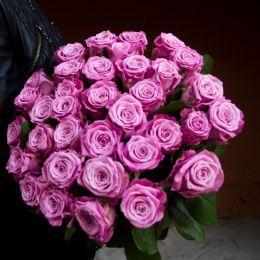 Роза лиловая 51