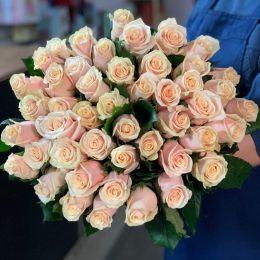 Роза крем моно