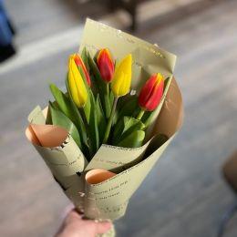 тюльпан 5
