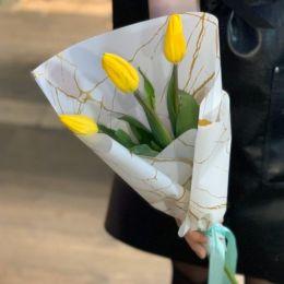 Тюльпан 3