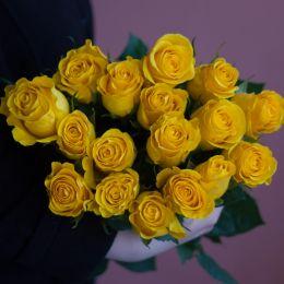 Роза желтая 15