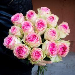 Роза розовая 15