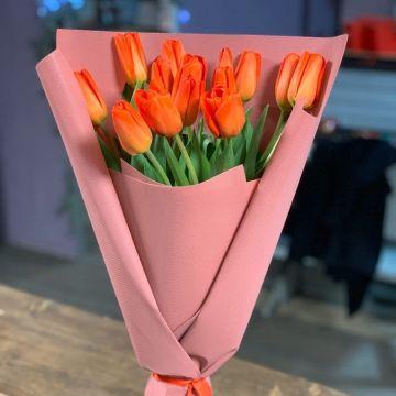 тюльпан 15