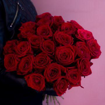 Роза красная 25