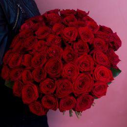Роза красная 51