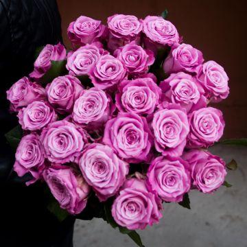 Роза лиловая 25